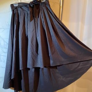 Gorgeous New skirt